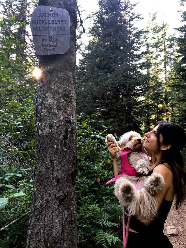 Hiking in Washington - Brianne Caplan