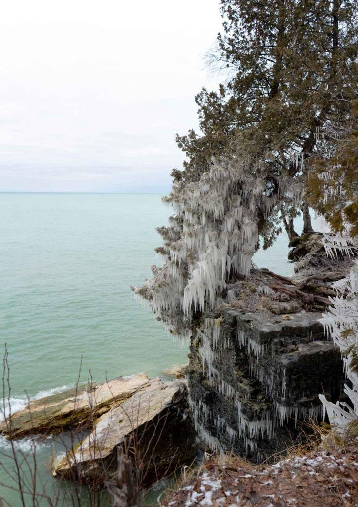 Icy trees in Door County - Cave Point Park