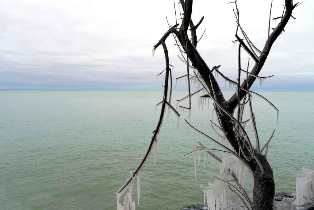Tree of Ice - Door County