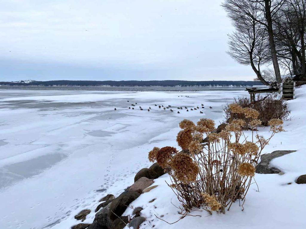 Winter in Lake Geneva along the Shore Path