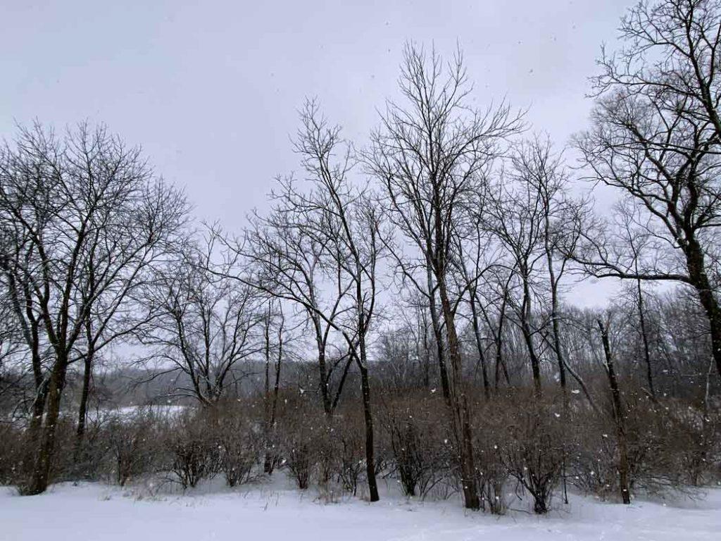Snowfall in Lake Geneva Wisconsin