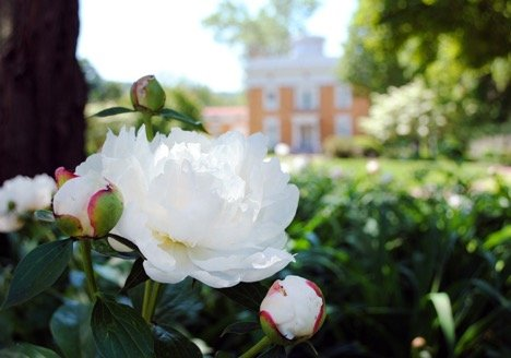 Lanier Mansion - things to do in Madison Indiana